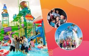 Entertainment   Fun   Theam Park